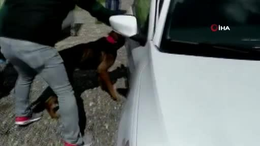 Aracın torpido gözünden uyuşturucu çıktı